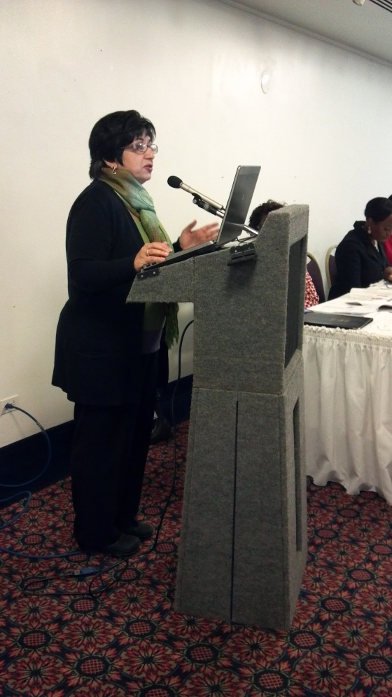 Elahe Amani, WIN Board Chair speaks on the morning panel Winning Strategies for Preventing Violence Against Women.
