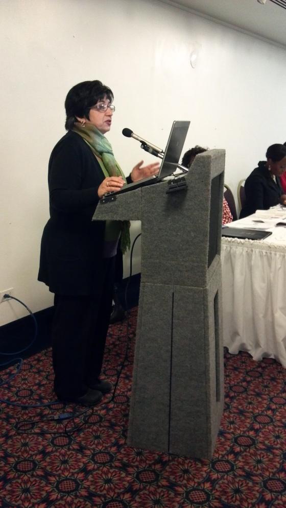 Elahe Amani, WIN Board Chair speaks on the morning panel Winning Strategies for Preventing Violence Against Women.